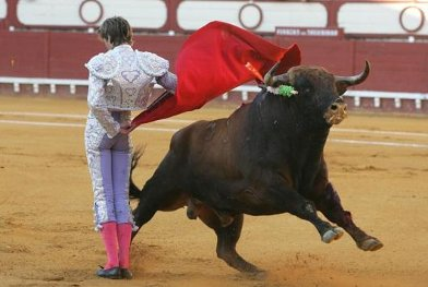 20111019095018-corrida-toros.jpg