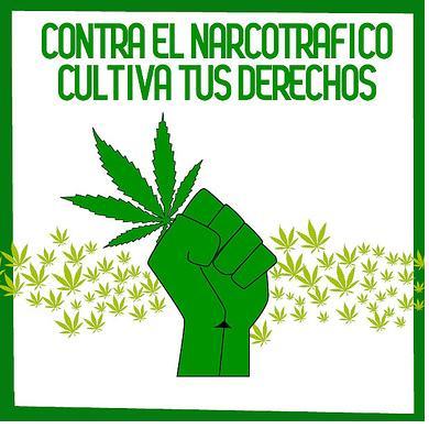 20121027132624-marihuana.jpg
