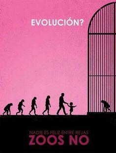 20141110180809-evolution.jpg