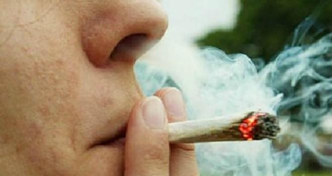 20121026161049-marihuana-1-660x350.jpg