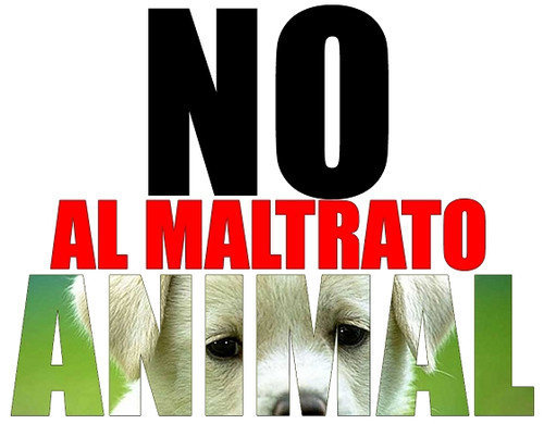 20141108133859-maltrato-animal.jpg